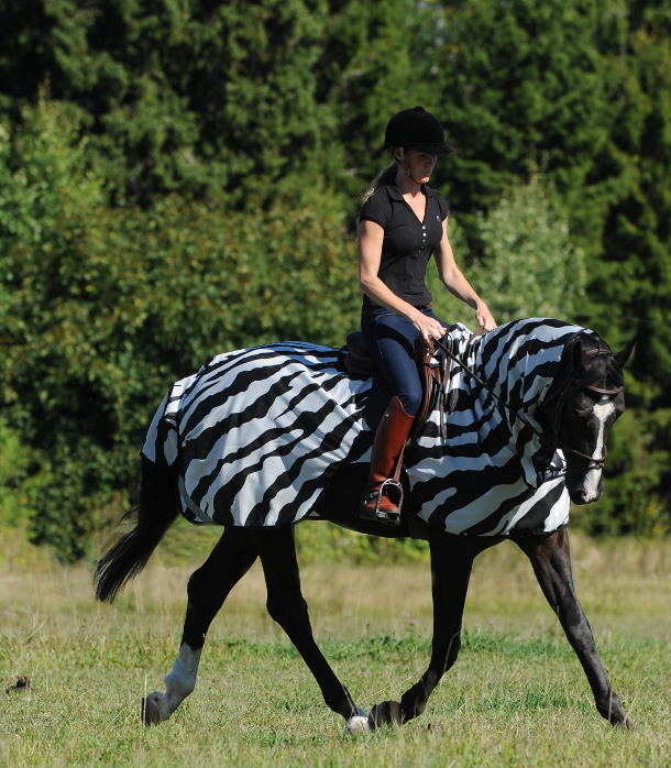 Buzz-Off Riding Zebra 6968 3