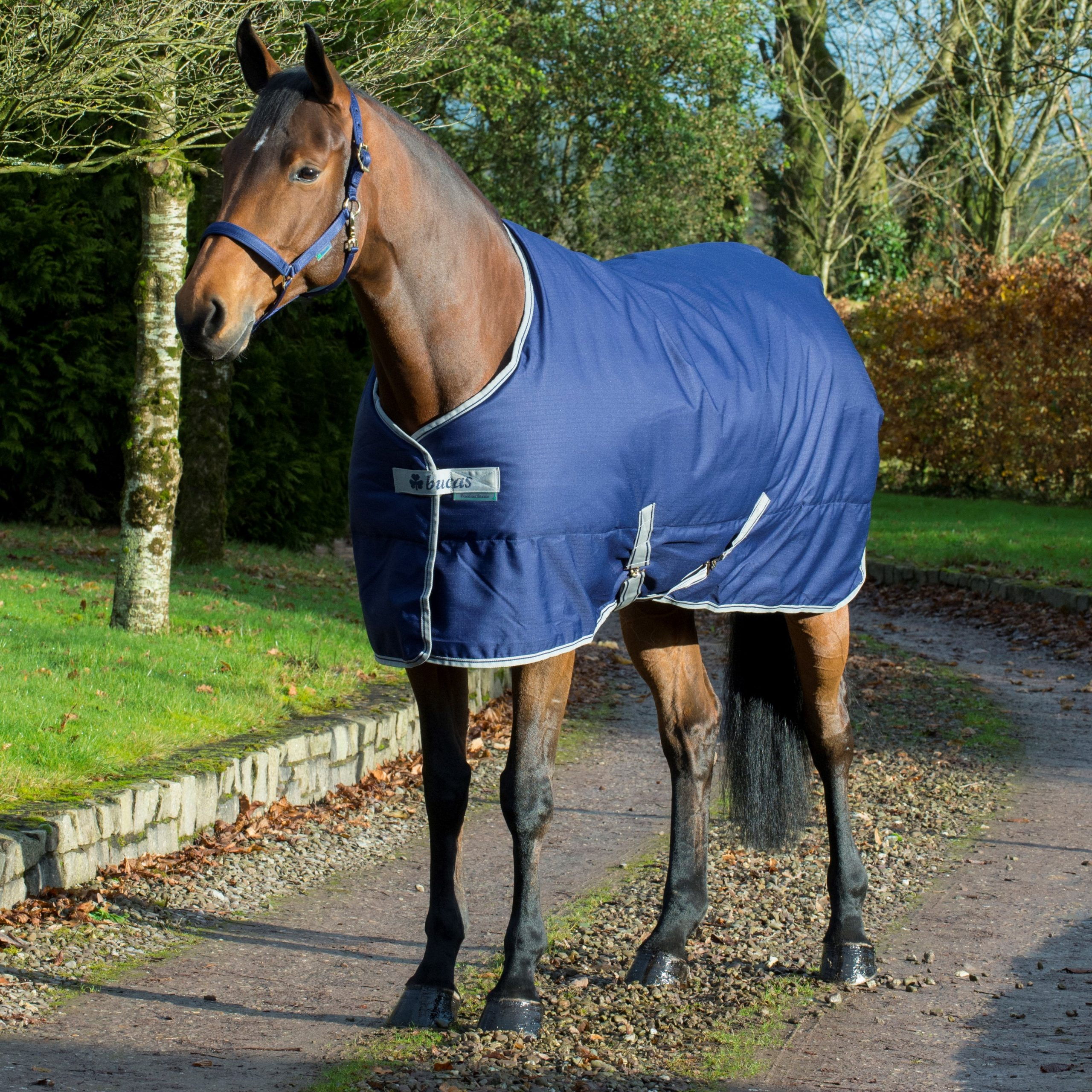 Bucas Freedom Stable 300g Navy