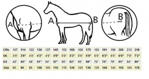 Measuring your horse