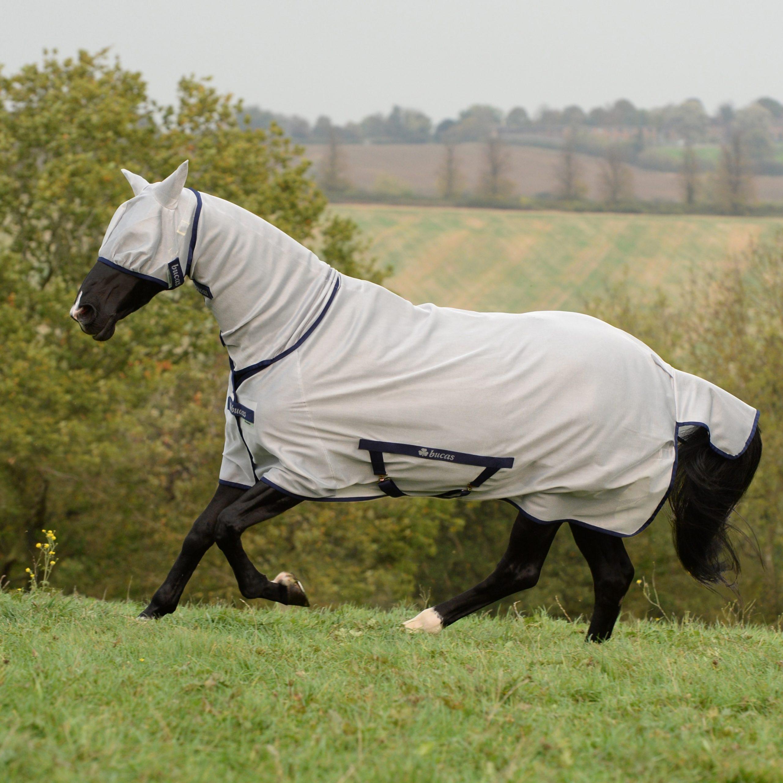 Paardrijden Dekens Horse Rug Fly