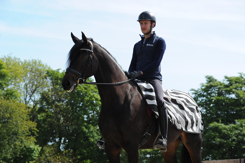 Riding Rug Zebra - Bucas