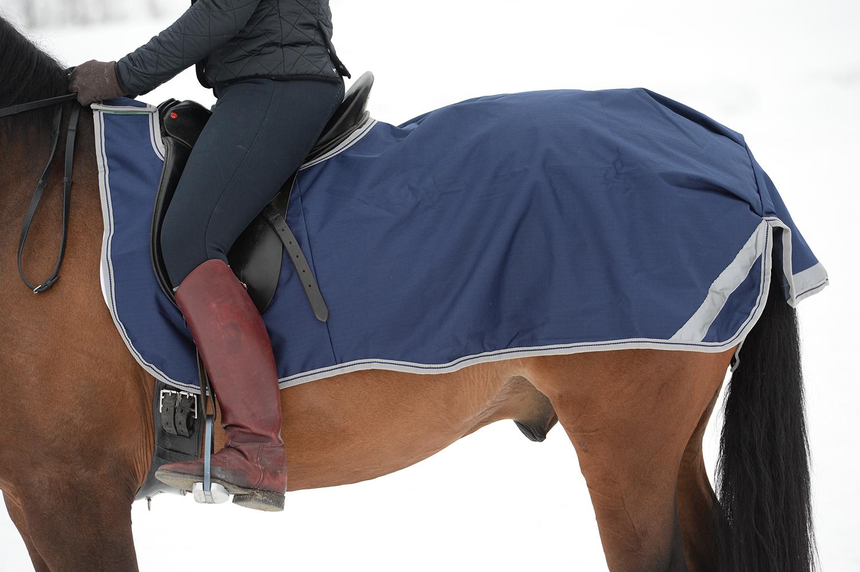 Freedom Riding Rug - Bucas