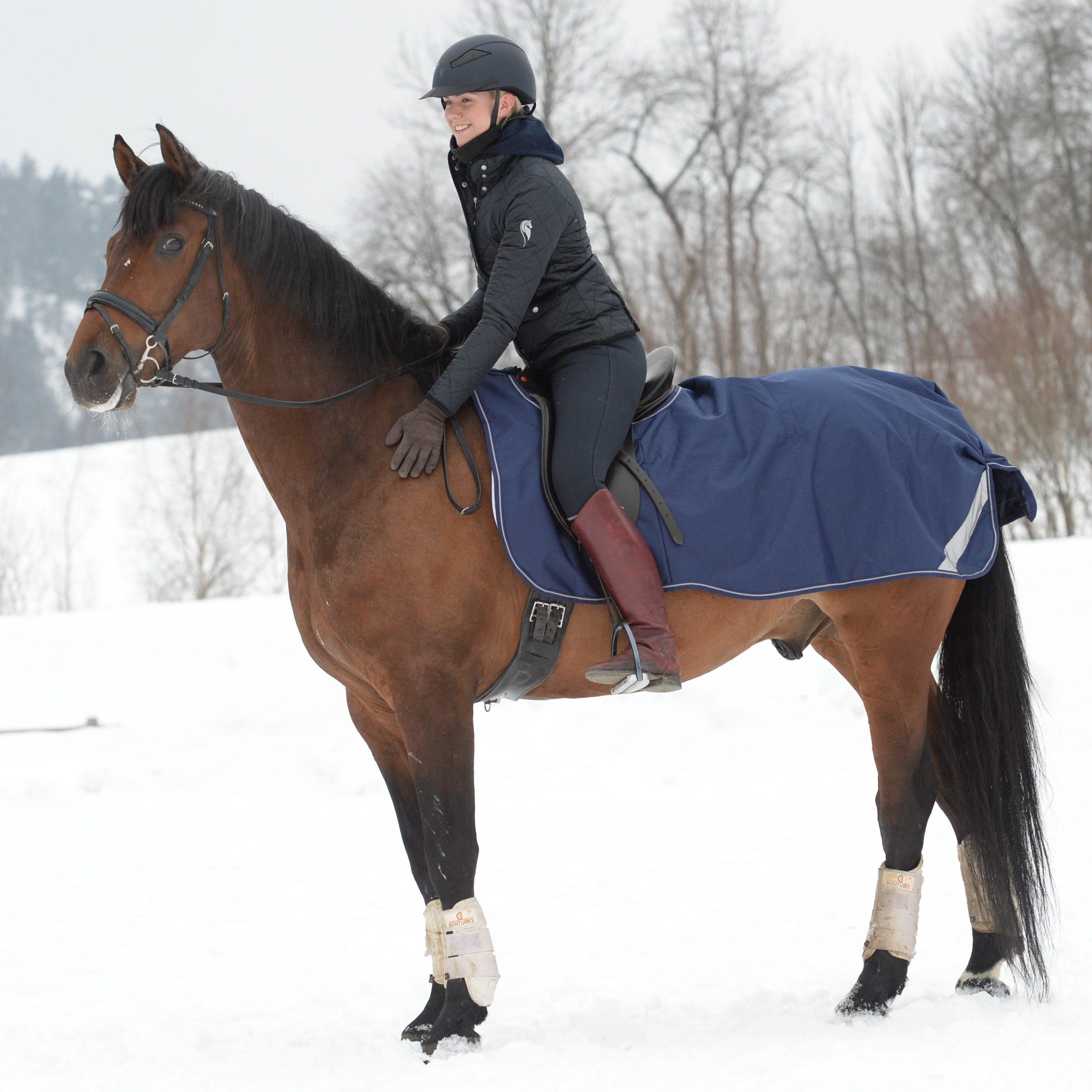 Waterproof Horse Exercise Sheet | Bucas