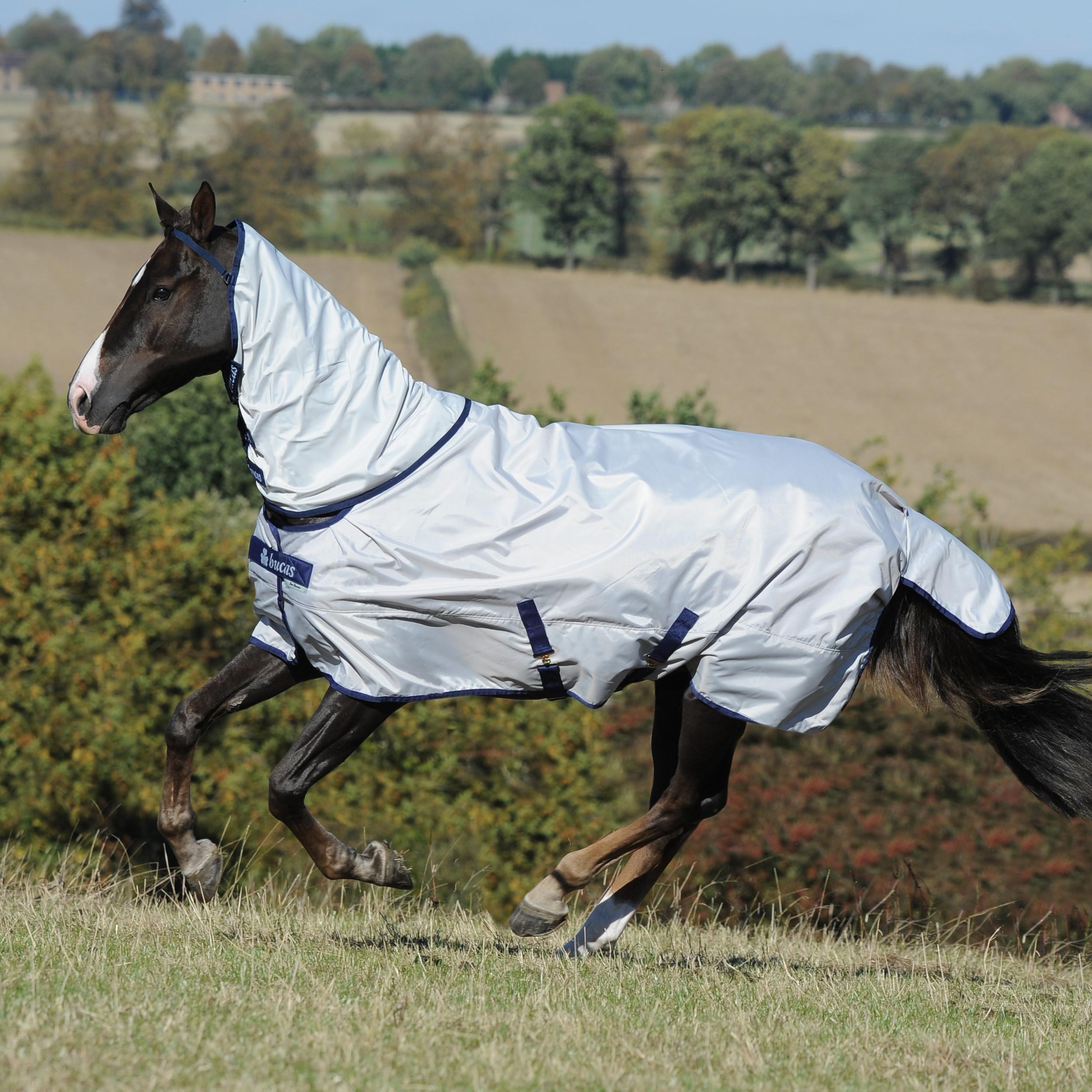 Ongebruikt Summer Horse Sheet | Bucas XV-15